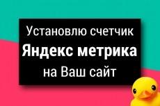 Установка Яндекс метрики, счётчика +3 цели на ваш выбор 8 - kwork.ru