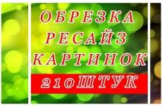 Удалю фон с картинки 7 - kwork.ru