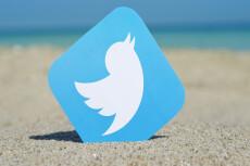 1700 подписчиков на Ваш аккаунт в Twitter 15 - kwork.ru