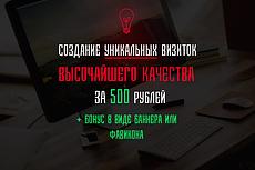 Уникальный векторный логотип высшего качества 19 - kwork.ru