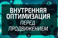 Проверим работу ваших Сеошников, вынесем заключение 6 - kwork.ru