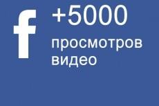 30 000 просмотров на видео в Facebook 11 - kwork.ru