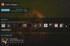 Прокачка персонажа в NeverWinter Online до 15 уровня, день в день 3 - kwork.ru