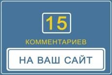 1 комментарий каждый день в течение месяца на ваш сайт 33 - kwork.ru