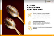 Инфографика для коммерческого предложения - КП, сайта или презентации 114 - kwork.ru
