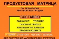 Руководство по запуску бизнеса -  франшиза 28 - kwork.ru