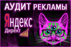 Проведу Аудит и дам рекомендации по улучшению Яндекс Директ 6 - kwork.ru
