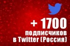 1000 подписчиков в Twitter. Безопасно. Офферы 22 - kwork.ru
