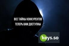 Все важные данные 30-ти конкурентов из Keys. so + бонус 23 - kwork.ru