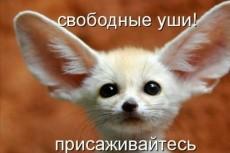 Расшифровка текста в Ворд 5 - kwork.ru
