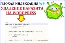 Настрою правильный robots.txt для WordPress 5 - kwork.ru
