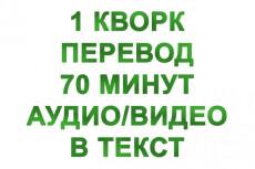 Переведу вашу аудио или видеозапись в текст 5 - kwork.ru