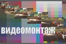 Монтаж, нарезка, склейка, наложение звука на видео 53 - kwork.ru
