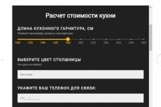 Создам для Вас Интернет-магазин и научу добавлять товары 9 - kwork.ru