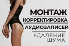 Профессиональный Аудиоролик. Дикторы на выбор 4 - kwork.ru