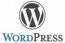 SEO анализ - исправлю ошибки вёрстки сайта на Вордпресс 10 - kwork.ru