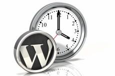 Настройка сайта WordPress 13 - kwork.ru