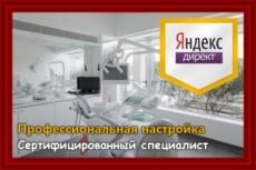 Аудит контекстной рекламы Яндекс Директ + SEO аудит сайта в подарок 6 - kwork.ru