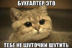 Бухгалтерское сопровождение, аутсорсинг 21 - kwork.ru