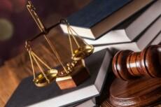 Подготовлю документы в суд 23 - kwork.ru