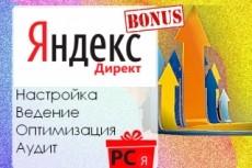 Настройка Яндекс. Директ, РСЯ 9 - kwork.ru