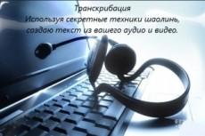 Сделаю текстовую версию аудио, видео, телефонных разговоров 19 - kwork.ru