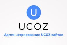 Консультации по созданию и продвижению сайта на UCOZ 18 - kwork.ru