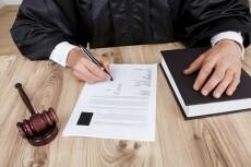 Первичная оценка документов по судебному делу, составление иска 12 - kwork.ru