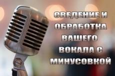 Сведу вокал с минусом 6 - kwork.ru