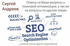 Консультационные услуги по SEO 13 - kwork.ru