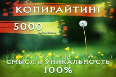 Качественный Рерайт 8000 символов 14 - kwork.ru