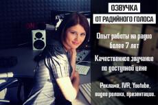 Сделаю аудиоролик. Для радио, ТВ, торговых центров. Озвучу видео 2 - kwork.ru