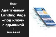 Лендинг под ключ 12 - kwork.ru
