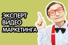 Провожу консультации по Skype. Продвижение канала, привлечение трафика 9 - kwork.ru