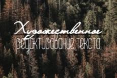 Корректирование художественных текстов 13 - kwork.ru