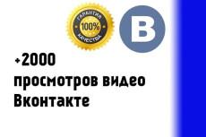 6000 просмотров видео в ВКонтакте 9 - kwork.ru