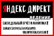 Создание и настройка рекламы под ключ на Поиск - Яндекс Директ 27 - kwork.ru
