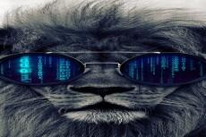 Удалю вирусы с Wordpress 17 - kwork.ru