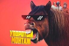 Видео под ключ 3 - kwork.ru