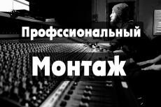 Редактирование видео, нарезка , склеивание, добавление текста 6 - kwork.ru