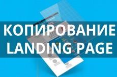 Скопирую Landing Page любой сложности, настрою формы заказа 12 - kwork.ru