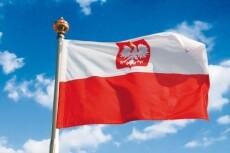 Premium перевод с польского и на польский язык 19 - kwork.ru