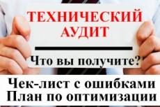 Базовый технический аудит вашего сайта 6 - kwork.ru