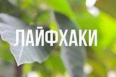 Создание сайта с ключами Steam 9 - kwork.ru