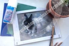 Рисую обложки книг и просто красивые иллюстрации 23 - kwork.ru