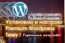 Переведу с английского на русский язык Premium Wordpress тему 20 - kwork.ru