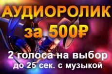 Озвучка в кратчайшие сроки 21 - kwork.ru
