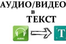 Аудио, видео в текст 23 - kwork.ru