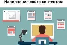 Выполню наполнение сайта товаром - 75 шт 21 - kwork.ru