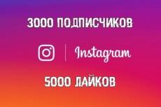 Продвижение Вашего Instagram аккаунта, через Платный сервис раскрутки 10 - kwork.ru